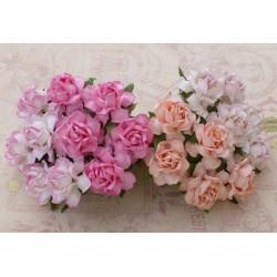 Cottage rose MIX POMARAŃCZ 25 mm, zestaw 20szt.