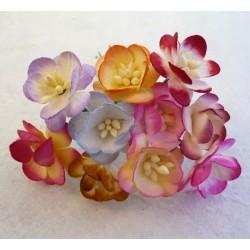 Cottage rose MIĘTOWE 25 mm, zestaw 5szt.