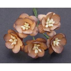 Kwiaty wiśni MIX CZERWIENI, zestaw 50szt.