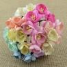 Kwiaty wiśni  dwukolorowe MIX KOLOR, zestaw 50szt.