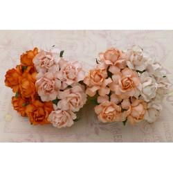 Cottage rose MIX CZERWIENI 30 mm, zestaw 20szt.