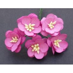 Kwiaty wiśni RÓŻ dwukolorowe , zestaw 5szt.