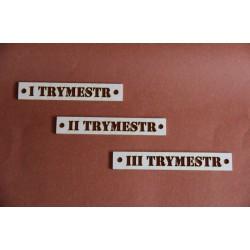 Tekturki TRYMESTR zestaw 3szt